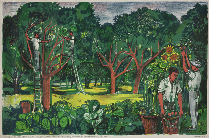Apple-Orchard,-Kent,-1951-by-John-Minton