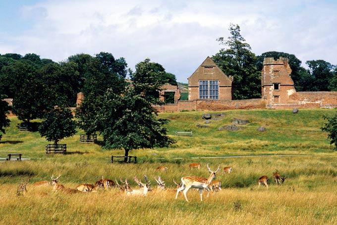 Bradgate House, Leicestershire © Alamy