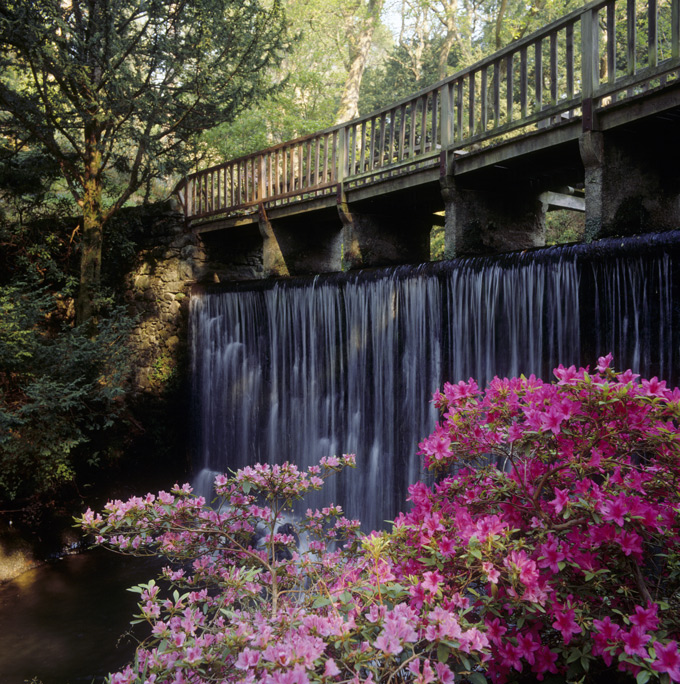 Bridge-and-waterfall-at-Bodnant-©National-Trust-Images-Ian-Shaw