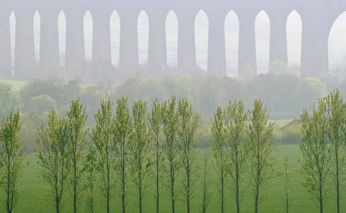 Landscape Photographer of the Year Poplar Echoes by Ian Cameron