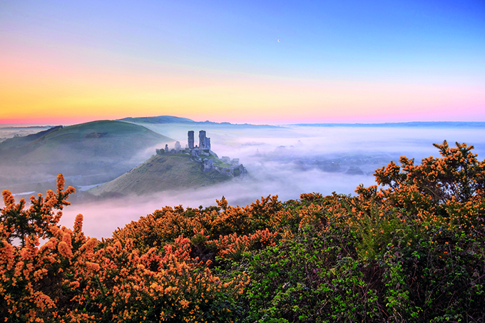 A misty morning at Corfe Castle, Dorset, England. Castles in England