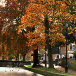 Bourton on the water in Cotswolds