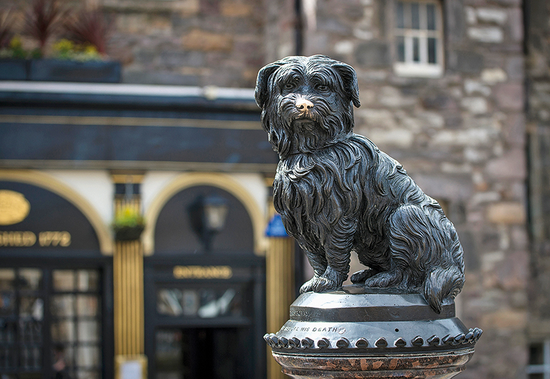 Local Greyfriars Bobby