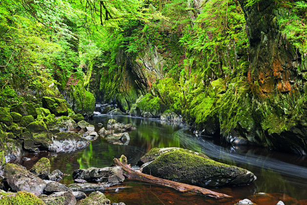The Fairy Glen, Betws-y-Coed, Snowdonia National Park, Wales, United Kingdom, Europe