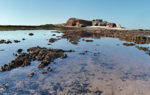 Hilbre Islands featured