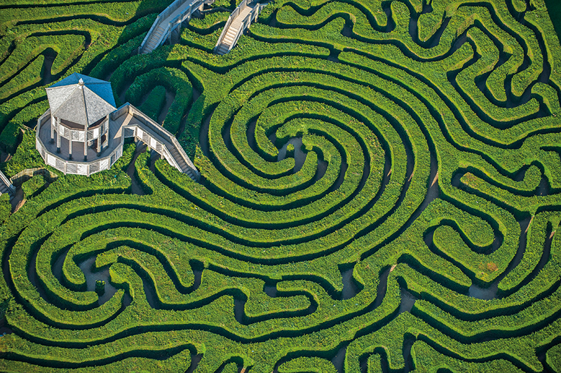 The maze at Longleat