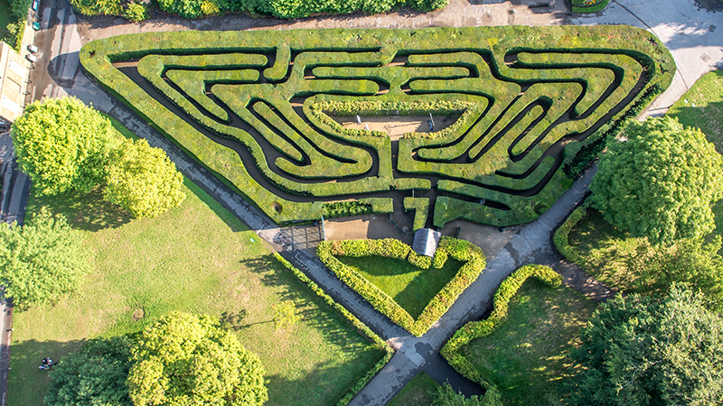 The maze at Hampton Court Palace