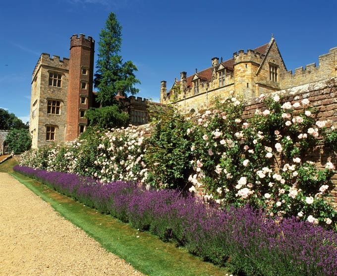 Lavender and roses at Penshurst Place © VisitBritain/David Sellman