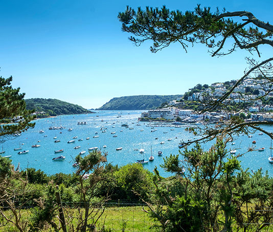 Salcombe from Snapes Point