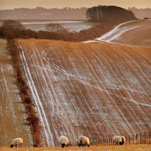 Tim Morland's The South Downs near Clayton, West Sussex, England