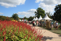 Events at RHS Wisley
