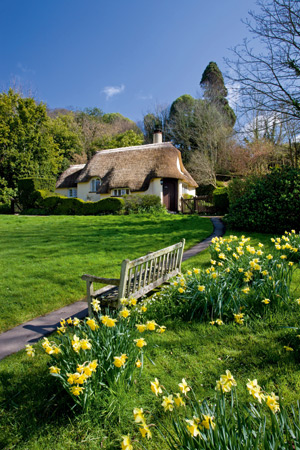 Pretty thatched cottage in Selworthy, Exmoor National Park