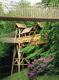 The grand Treehouse and sky walkways, Alnwick Garden