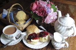 Cream tea at Docton Mill Gardens tearoom
