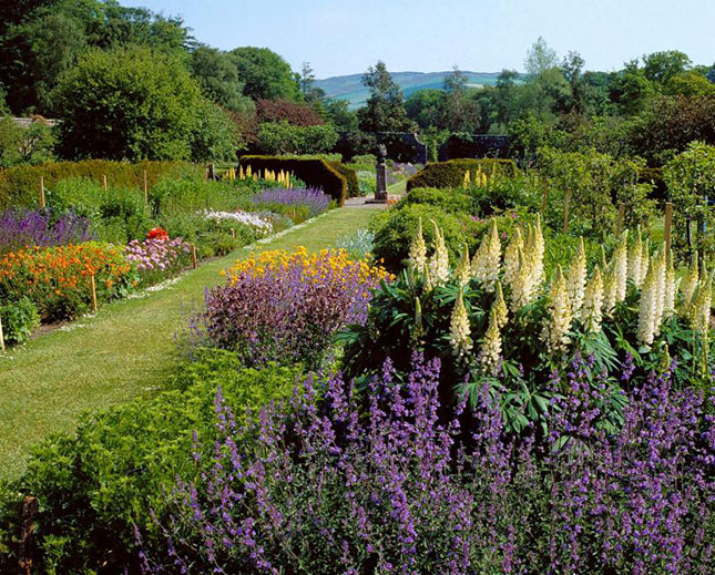 walledgarden culzean castle centre flowers bloom summer plants walled garden